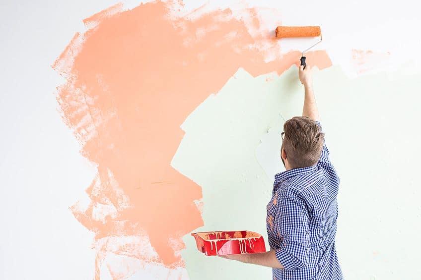 Roller vs Interior Paint Spray